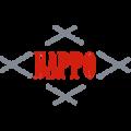 Ортопедические матрасы Барро в Минске